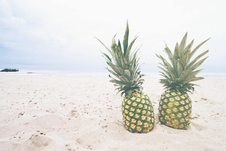 pineapple-supply-co-RLak_xZb5sU-unsplash